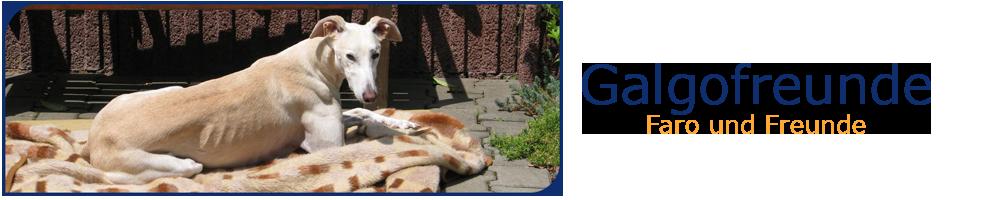 Galgofreunde - Hundemantel, Geschirr, Halsband